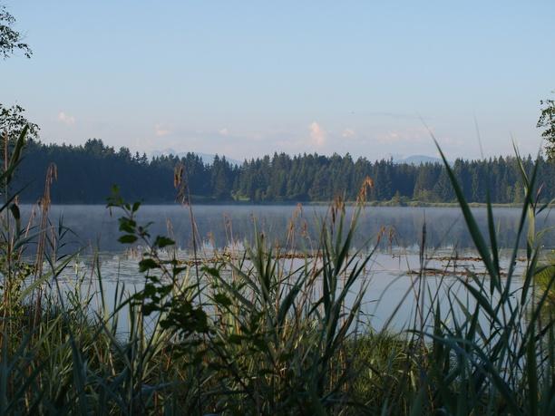 Campingplatz Elbsee